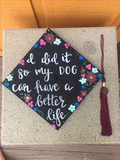 Graduation cap dog