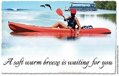 Florida Kayaking tours