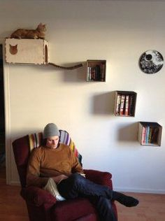 Необычный домик для кошки своими руками