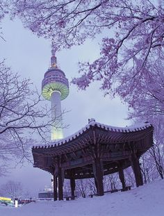 Winter in Seoul Tower, South Korea.