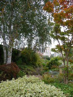 Jardin Duhamel du Monceau en automne, Versailles (78), 6 octobre 2012, photo Alain Delavie  http://www.pariscotejardin.fr/2012/10/le-potager-du-roi-en-automne/