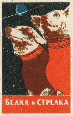 Vintage Russian Matchbox. -- Russian dogs in space. Radness