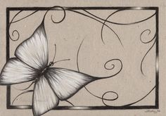 Pencil Drawings of Flowers and Butterflies | Butterfly of August by Zindy