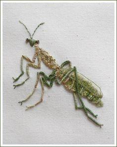 Gallery.ru / Photo # 12 - Bugs spiders - svetlanashake
