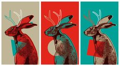 jackalope illustration - Căutare Google