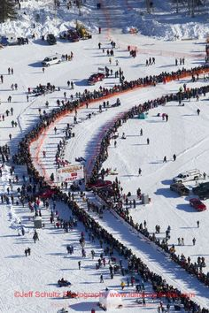 Teams line up in the start chute of the Iditarod in Willow, Alaska