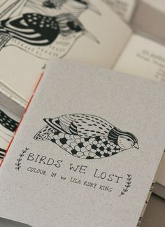 Birds We Lost - Colouring Book