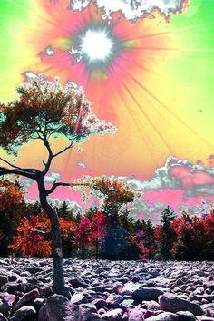 Any colour you like. Hippie Trippy, Hippie Art, Trippy Wallpaper, Wallpaper Backgrounds, Psychadelic Art, Psy Art, Glitch Art, Dope Art, Surreal Art