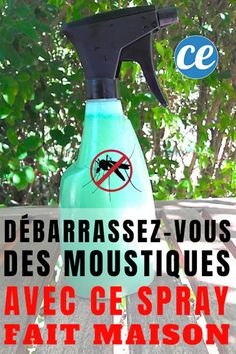Get Rid Of Mosquitoes In The Garden With This Homemade Spray. Mosquito Spray, Spray Bottle, Cleaning Supplies, Rid, Conditioner, Diy Projects, How To Plan, Peach, Planning