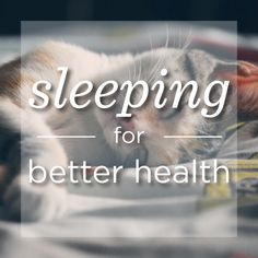 Sleep away the pounds with Pack Health! Did you know sleeping is one of the major factors in weight loss? Good sleep allows your body to breakdown those stubborn fat cells and also gives you a boost in beauty ;)