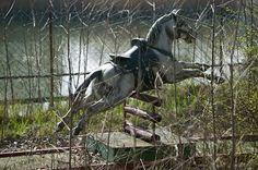 Image detail for -... parks are terrifying (34 Photos) » joyland-abandoned-amusement-park