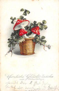BG4487 mushroom geburtstag birthday germany greetings in Collectables, Postcards, Greetings   eBay Mushroom Decor, Mushroom Art, Scary Cakes, Fairytale Art, Holiday Postcards, Vintage Holiday, Botanical Illustration, Vintage Cards, Botanical Prints