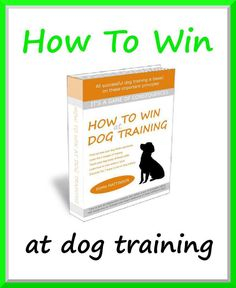 Offer your dog a safe training environment. Visit - http://dogtraining-htq7w5v3.canitrustthis.com