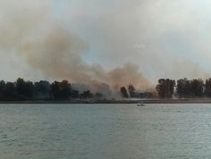 Government Island Fire