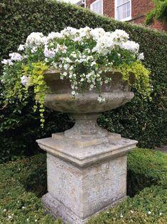 8 Flower Landscape Ideas For Your Garden – Garden Ideas 101 Formal Gardens, Outdoor Gardens, Container Plants, Container Gardening, Garden Urns, Cacti Garden, Flower Pots, Flowers, Garden Living