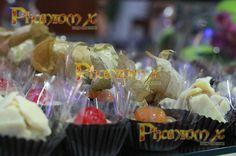 2015 SII - PhantomX Espaço para Eventos | Casa de festas 51 4106.1032 - 3574.4385 Porto Alegre