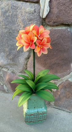 Nylon flower clivia