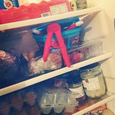 Elf on the Shelf raids the fridge