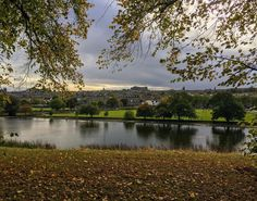 Autumn at the park #Edinburgh #Scotland #Autumn #Fall #LeafFallDown #Park #Nature #Architecture