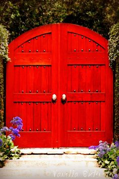 You expect a secret garden to be behind these doors . . .