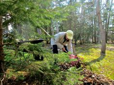 Yard Work As Recreation For A Loved One With Alzheimers