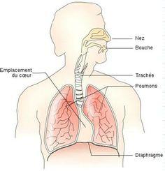 La respiration consciente est votre meilleure amie !