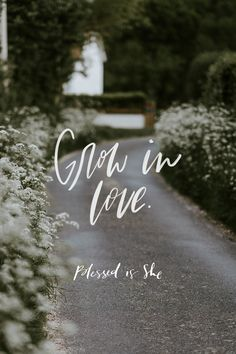 There was a time in my younger life when I considered leaving the Catholic faith and joining a Christian denomination. It was shortly after my fall and return to God. When I re-dedicated my life to Christ, I wanted to live for Him completely, but I didn't have any Catholic friends who were actually practicing their faith. // daily devotionals for women catholic