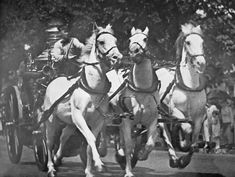 "A picture of the ""The Last Run"" of the DCFD Fire Horses Barney, Gene, and Tom. The Driver is Jim Gatley. The Run was held on June 15, 1925. They responded from Engine Company No 8 along North Carolina Avenue S.E. Tom was the last D.C. fire horse to die."
