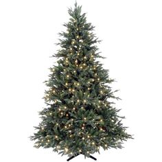 Houseology Delaware XL Fast Build Pre-Lit LED Christmas Tree 3.6m ($2,255) ❤ liked on Polyvore featuring home, home decor, holiday decorations, christmas, houseology, christmas holiday decor, christmas home decor and christmas holiday decorations