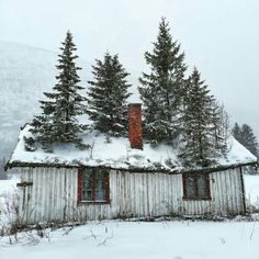 Repost from using - This is the first time weve ever seen anything like this before! We think this little cottage has some serious curb appeal. Old Buildings, Abandoned Buildings, Abandoned Places, Interesting Buildings, All Nature, Winter Pictures, Abandoned Mansions, Old Barns, Cabins In The Woods