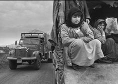 1991: Emergency in Kurdistan - largest emergency relief operation to  date. MSF provide care in Turkey, Iran  and Jordan to Kurds displaced by the  Gulf War. / Former Yugoslavia - The MSF relief convoy evacuating the  wounded from Vukovar hospital comes under attack. Three of our workers are wounded. © John Vink