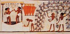 HISTOIRE du SAVON - Un Certain regard....