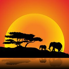 New Sunset Silhouette Art Painting Beautiful Ideas Elephant Silhouette, Animal Silhouette, Tree Silhouette, Sunset Silhouette, Image Elephant, Elephant Art, African Art Paintings, African Artwork, Abstract Paintings