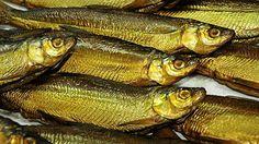 Bayern, Chiemsee, Fischen am Chiemsee, Fraueninsel, Tourismus