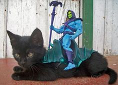 yes! Skeletor and Panthor