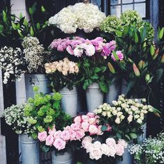 London flower markets are the BEST