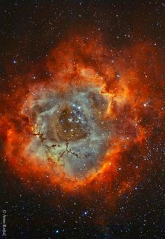 The Rosette Nebula in Hydrogen and Oxygen. The stars in the energetic cluster, cataloged as NGC 2244, are only a few million years old, while the central cavity in the Rosette Nebula, cataloged as NGC 2237, is about 50 light-years in diameter. The nebula can be seen firsthand with a small telescope toward the constellation of the Unicorn (Monoceros).
