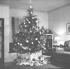 Christmas Tree  1936    Collections Online : mnhs.org