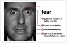 Fear #facial #expression #universal #emotion