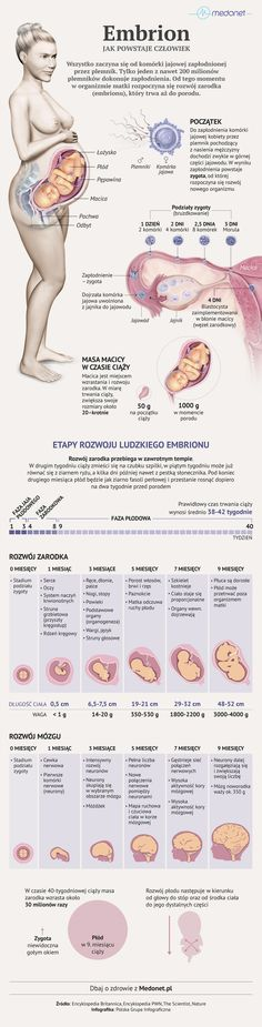 School Staff, Human Body, Children, Kids, Maternity, Knowledge, Medical, Science, Education