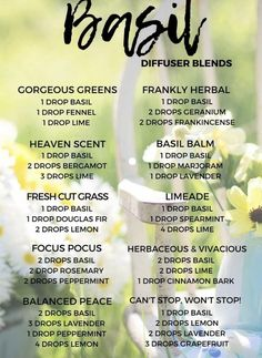 calming oils for dogs doterra best essential oil combination for anxiety Helichrysum Essential Oil, Basil Essential Oil, Doterra Essential Oils, Young Living Essential Oils, Healing Oils, Aromatherapy Oils, Melaleuca, Essential Oil Diffuser Blends, Doterra Diffuser