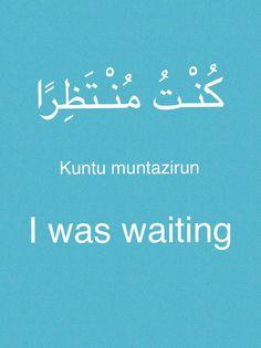 (Learning Arabic-MSA (Fabienne)