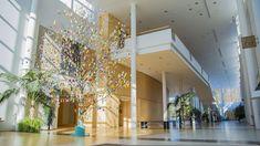 Pääsiäsipuu koristaa Kuhmo-talon aulaa.
