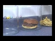 The Shocking Truth About McDonald's Burgers And Fries. - YouTube.flv - YouTube