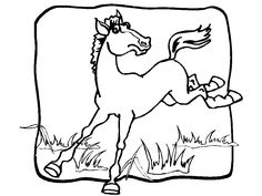 free animals horse printable coloring pages for kindergarten