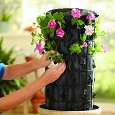 The Flower Tower - ThingLink