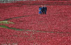 05 AUGUST 2014 The colour of peace amid a sea of blood red: Duchess of Cambridge wears tranquil blue to plant a memorial poppy at the Tower  The Duchess wore a £225 LK Bennett dress in serene blue at the Tower Echoes last night's cream Alexander McQueen at St Symphorien cemetery  Joined Duke of Cambridge and Prince Harry to plant a ceramic poppy Part of Blood Swept Lands and Seas of Red memorial installation.