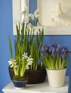 Parede azul + espelho branco + bulbos = combinação perfeita