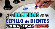 Los patógenos orales puede llegar a lugares distantes dentro de su anatomía y causar serios problemas. http://articulos.mercola.com/sitios/articulos/archivo/2014/03/27/patogenos-orales.aspx