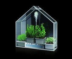 Smeg's Living Home Garden